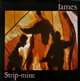 James ‎- Strip-mine (LP) (VG+/VG-)